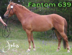 fantom-120705-045