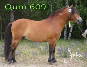 qum-120705-074